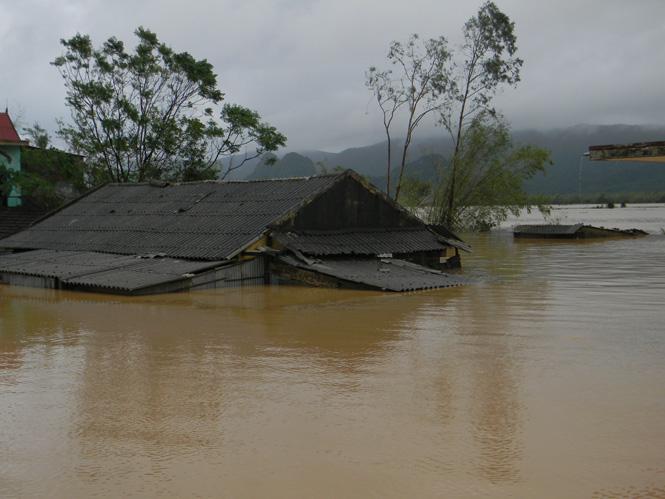 ỦY BAN BÁC ÁI XÃ HỘI CARITAS VIỆT NAM- THƯ KÊU GỌI Cầu nguyện và cộng tác cứu trợ nạn nhân lũ lụt