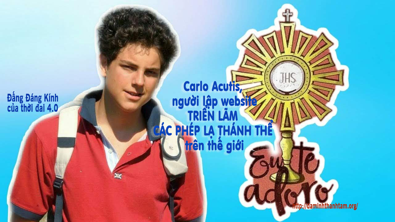 Lập trình viên máy tính tuổi teen Carlo Acutis sắp được phong chân phước, mẫu hình cho giới trẻ Công Giáo thời đại 4.0