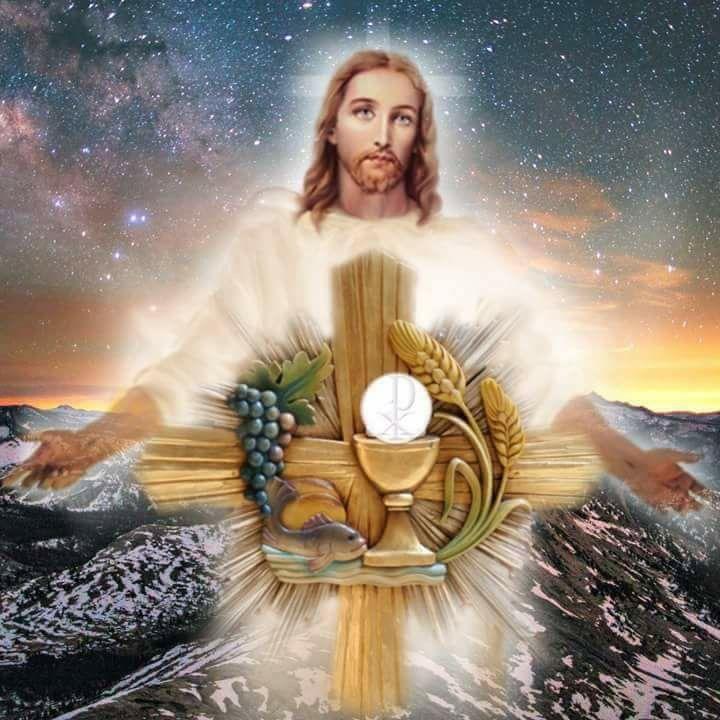 Thánh Thể: Quà tặng tuyệt vời cho con người, cho tôi. Suy niệm Lễ Mình Máu Thánh Chúa