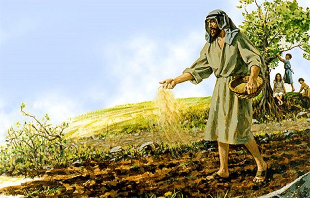 Sự quảng đại của Thiên Chúa. Suy niệm Lời Chúa Thứ Bảy Tuần XXIV Thường Niên.