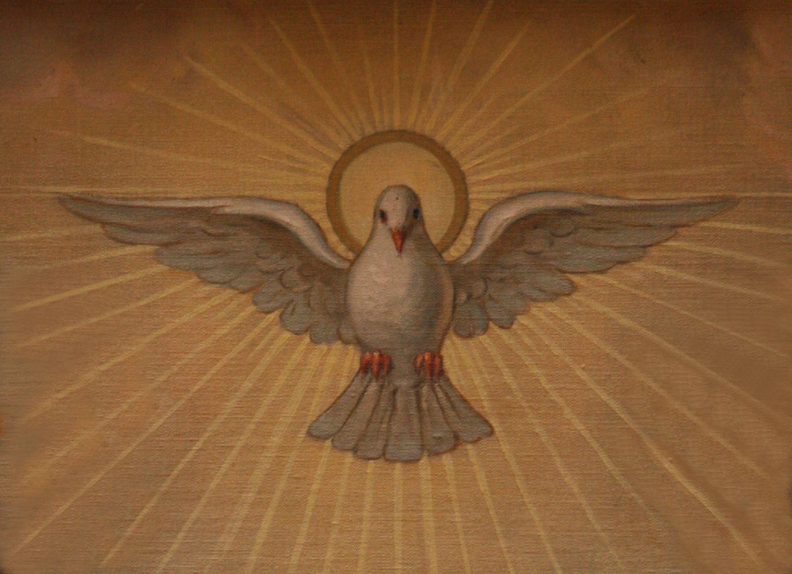 Thần Khí của Sự Thật. Suy niệm Lời Chúa Thứ Tư Tuần VI Phục Sinh.