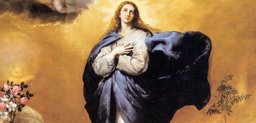 Đức Trinh Nữ Maria, Đấng đầy ân sủng. Lễ Trọng Mừng Kính Mẹ Vô Nhiễm (8/12)