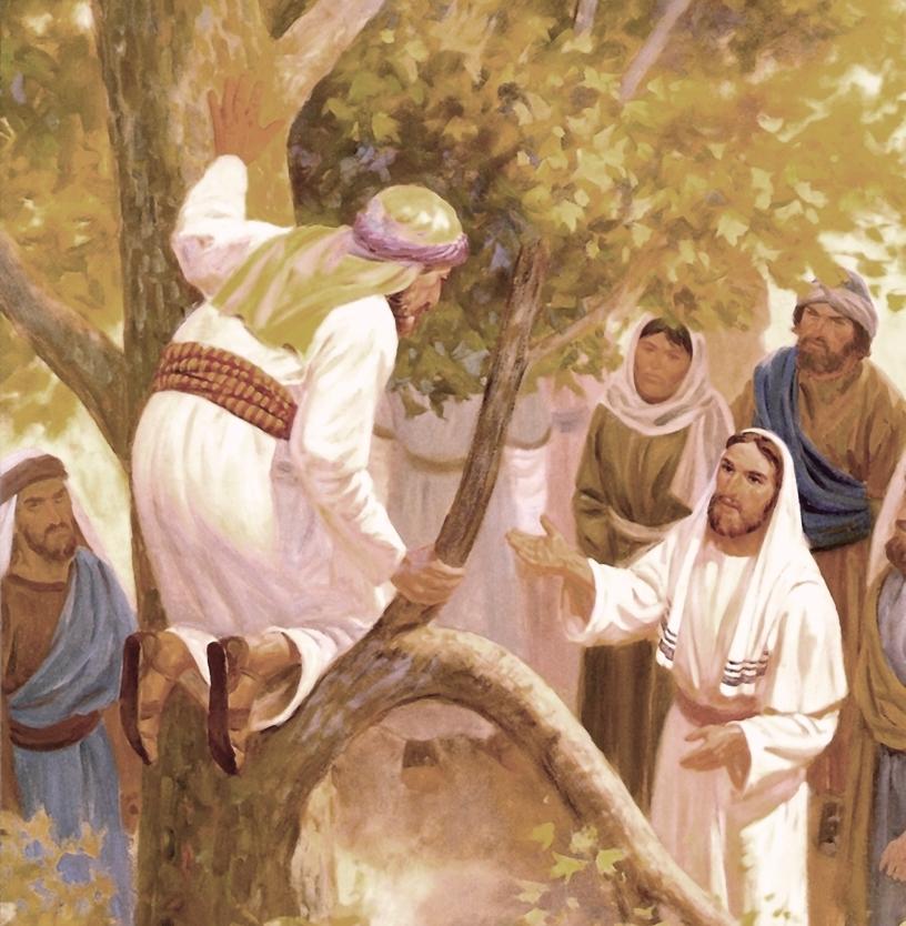 Để Chúa đụng chạm và được biến đổi. Suy niệm Lời Chúa Thứ Ba Tuần XXXIII Thường Niên.