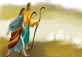 CHÚ Ý ĐẾN ĐIỀU CHÍNH YẾU, ĐỪNG BÁM VÍU NHỮNG THỨ TÙY PHỤ. Suy niệm Lời Chúa Chúa Nhật XV Thường Niên.